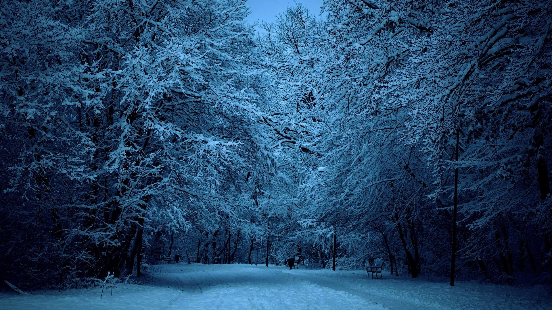 Falling Skies Wallpaper 1920x1080 Snow Covered Winter Street At Dusk Full Hd Wallpaper And