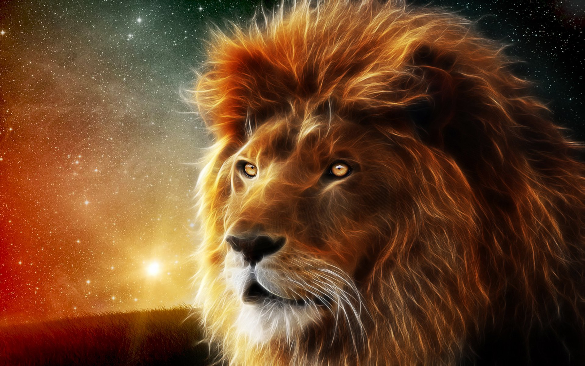 Hd wallpaper background id 372048 1920x1200 animal lion