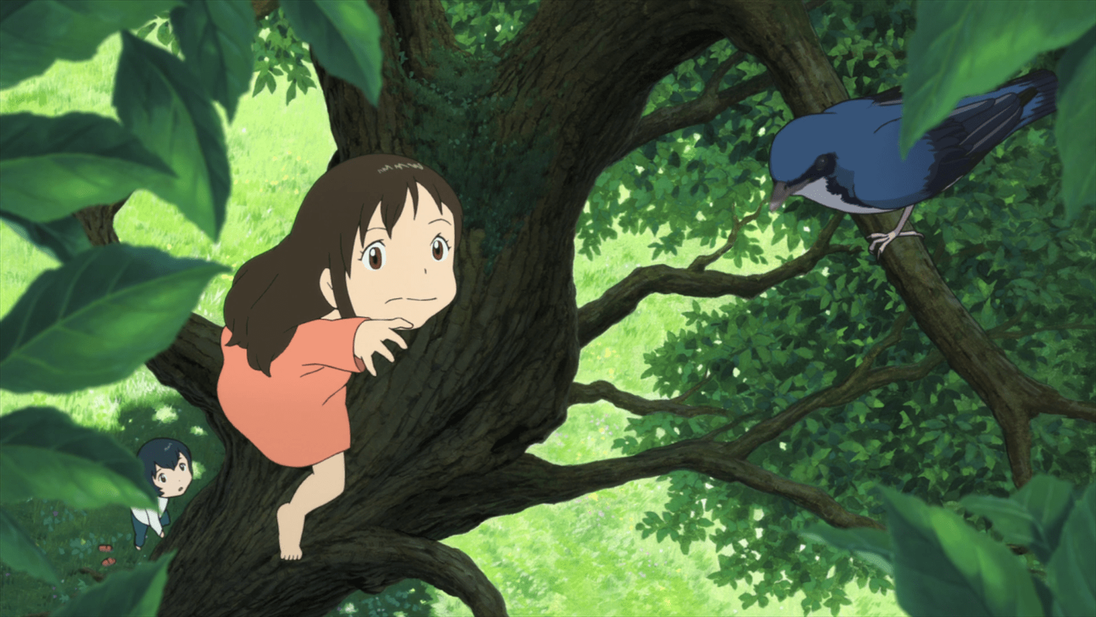 Wallpaper Anime Girl Cool Ame And The Bird Wolf Children Wallpaper And Background