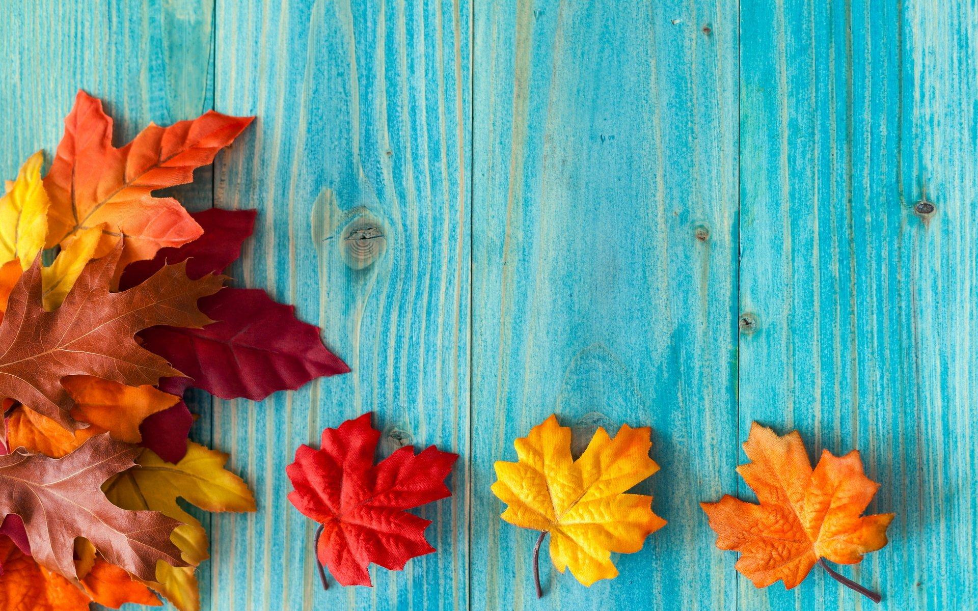 Cute November Calendar Wallpaper Fall Full Hd Wallpaper And Background Image 1920x1200