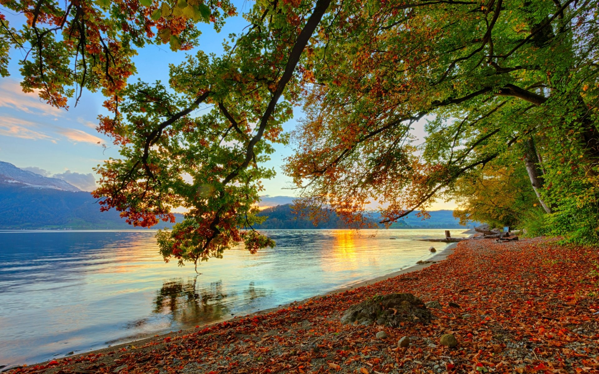 Fall Scenery Hd Wallpaper Autumnal Tune Full Hd Wallpaper And Background 2048x1280