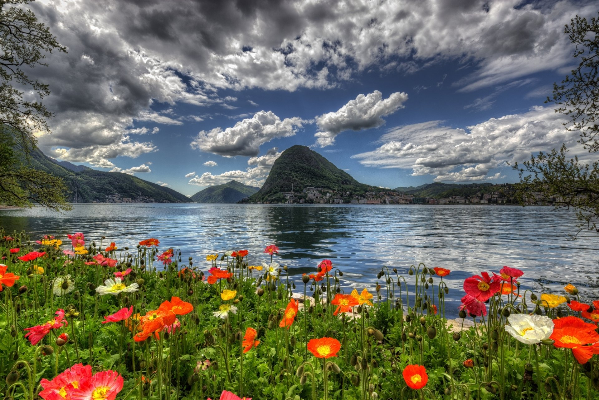 3d Flower Wallpapers For Iphone Flowers By Lake In Switzerland Full Hd Wallpaper And