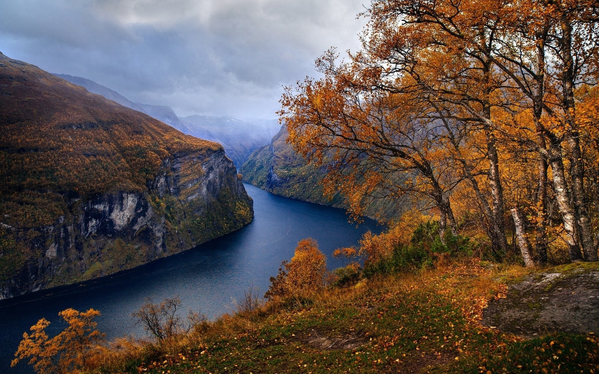Iphone 6 Wallpaper Fall Leaves Autumn Trees Along The Fjord Hd Wallpaper Background