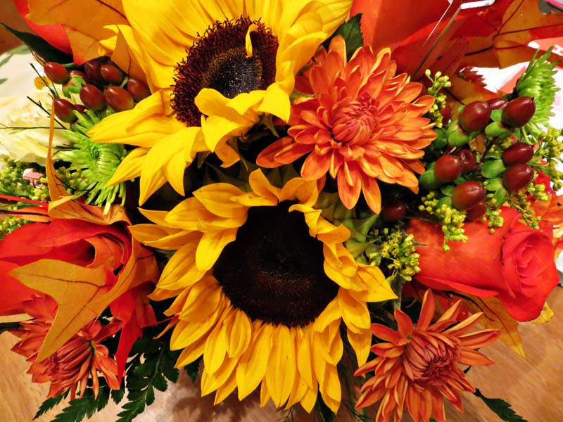 Free Fall Mums Wallpaper Thanksgiving Flowers Images By T Dashfield