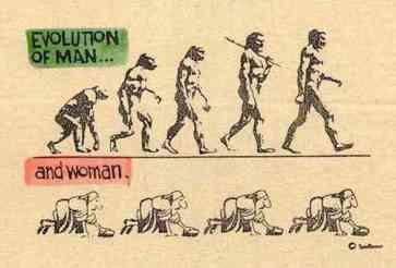 evolution.jpg_2207
