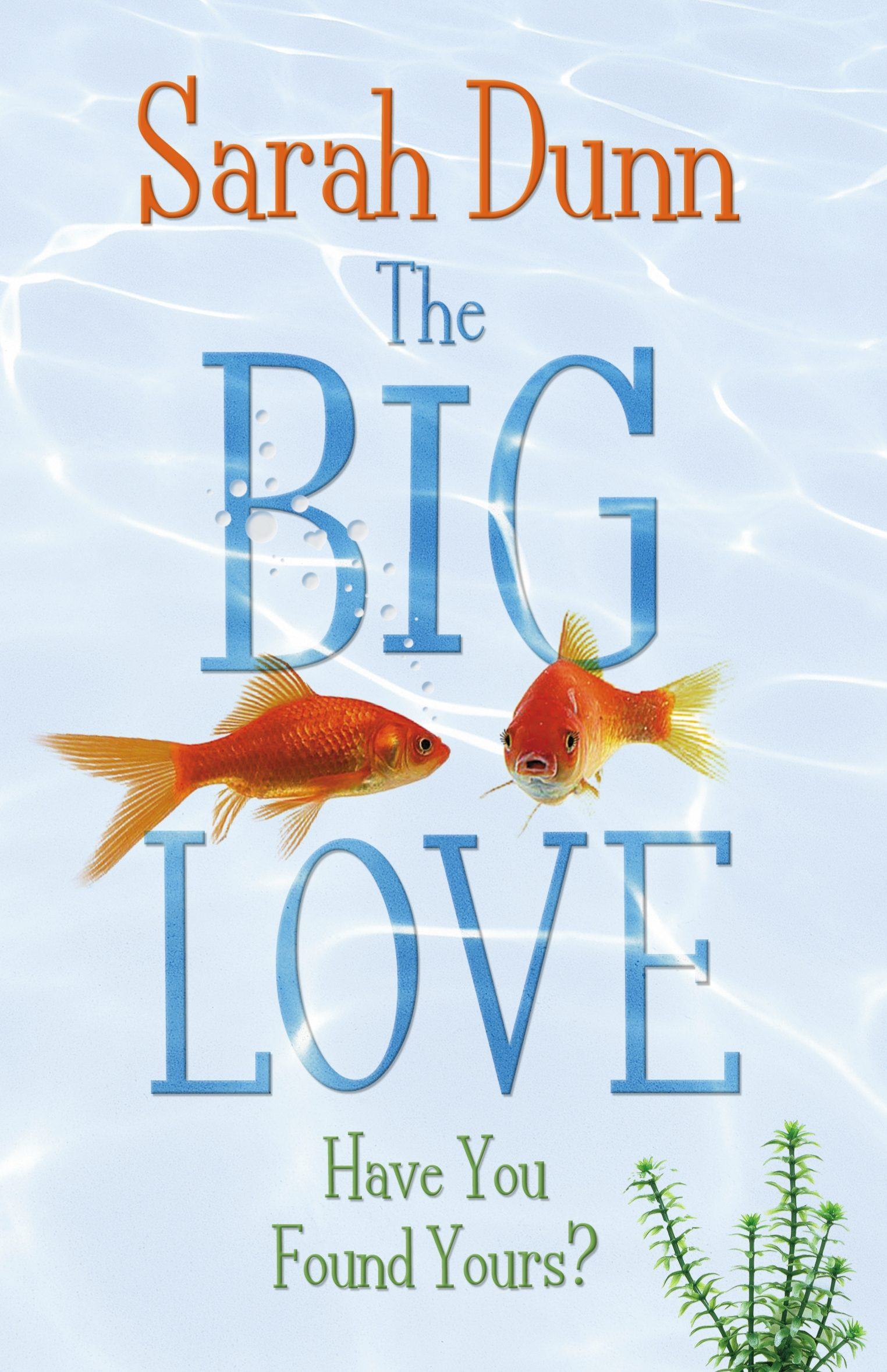 Big Fish Libro The Big Love Ebook Sarah Dunn Descargar Libro Pdf O Epub 9781405918589
