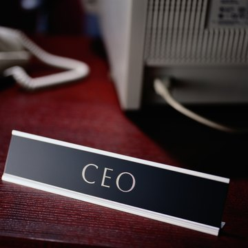 The Job Description for the Chief Executive Officer of a Non