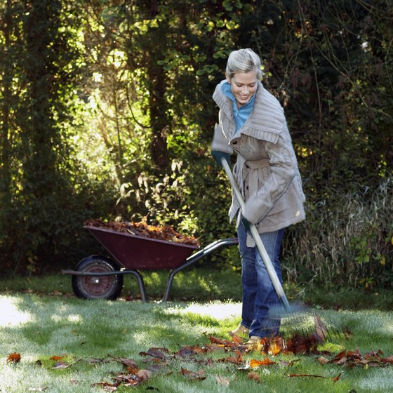 How Many Calories Does Heavy Yard Work Burn? Healthy Living