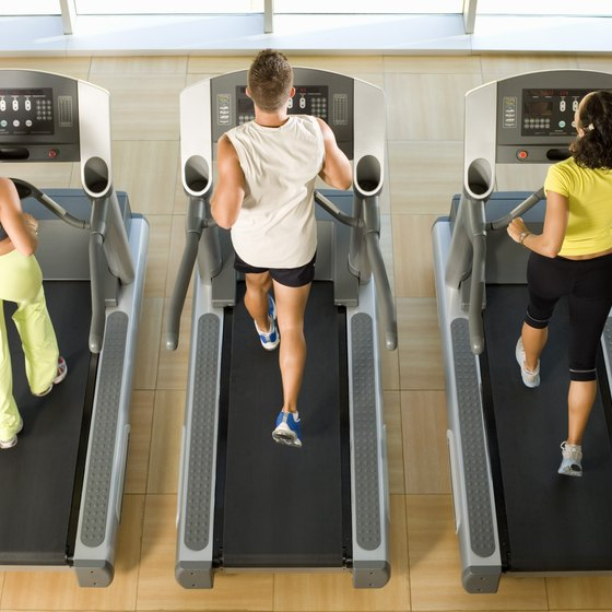 The Best Gym Workouts for Weight Loss Healthy Living - gym workout for weight loss