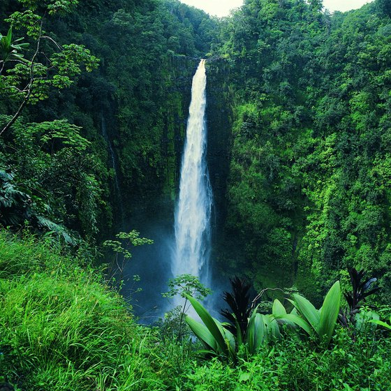 Akaka Falls Wallpaper What Are Hawaii S Natural Resources Usa Today