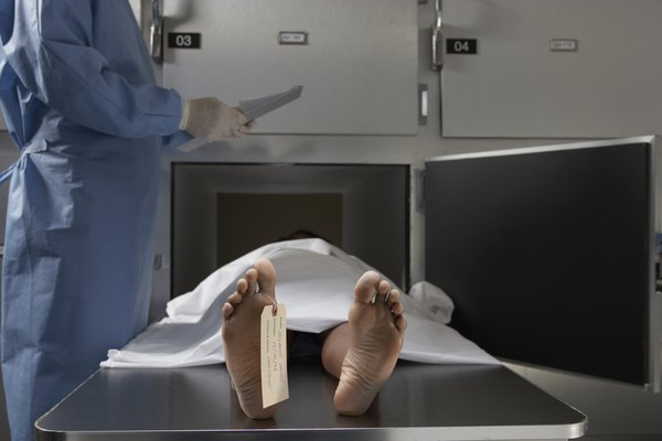 What Does a Mortuary Assistant Do? - Woman