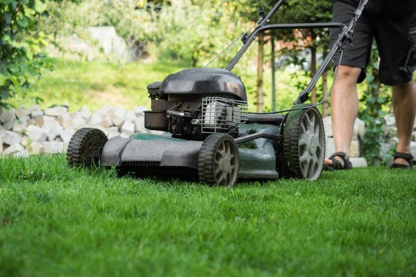 How to Use Carb Cleaner Spray on a Lawnmower Home Guides SF Gate