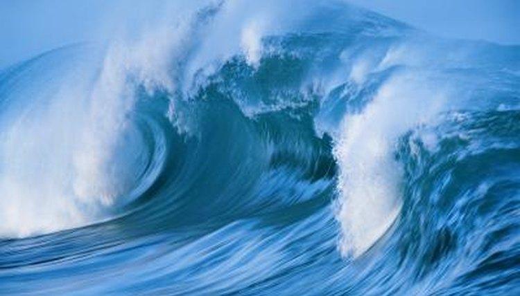 Farm Girl Wallpaper How Do Waves Affect Marine Animal Life Animals Mom Me