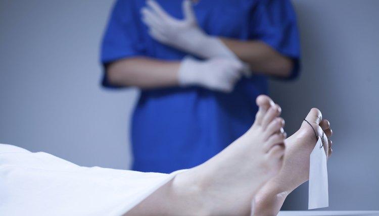 How to Become a Medical Examiner Assistant Career Trend - medical examiner job description