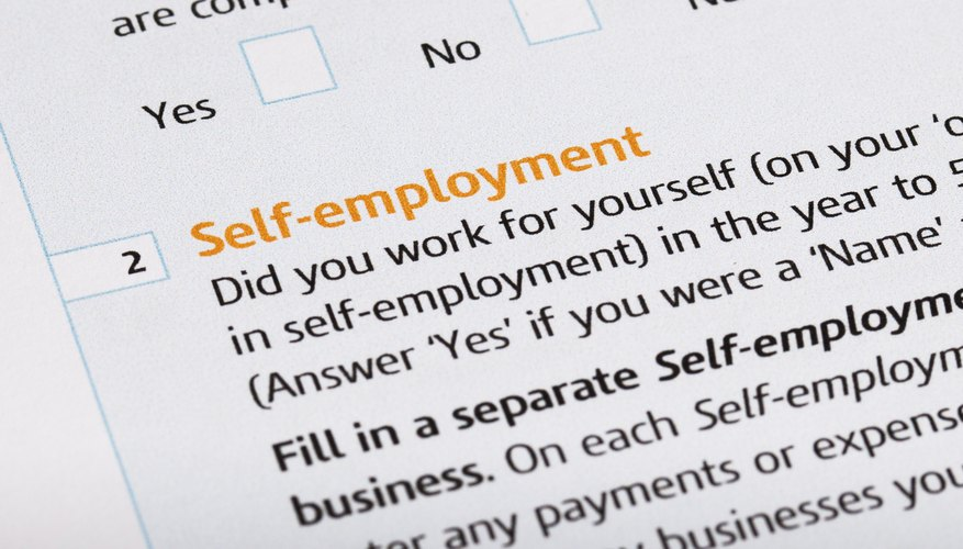 Self-Employed Year-to-Date Profit  Loss Statement Requirements