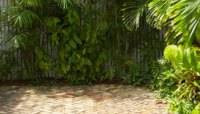 How to Prevent Algae Growth on a Brick Patio | Garden Guides