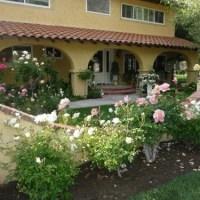 Розы в саду - садовый дизайн