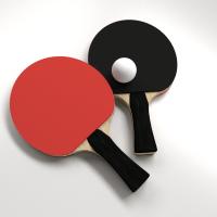 Table Tennis Set 3D Model .3ds .fbx .blend .dae - CGTrader.com