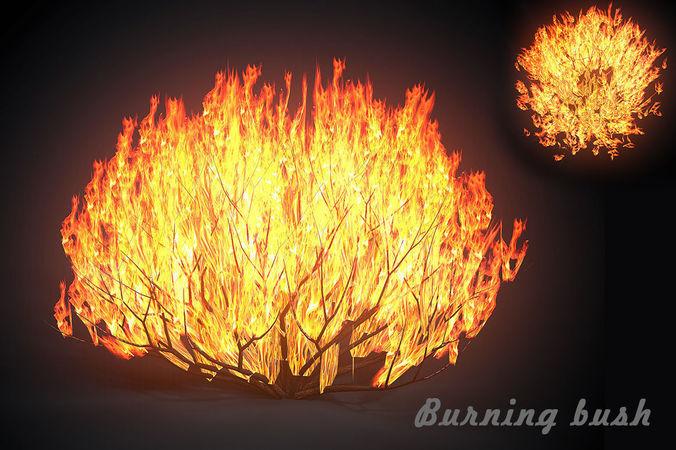 3d Fire Name Wallpaper 3d Asset Burning Bush Cgtrader