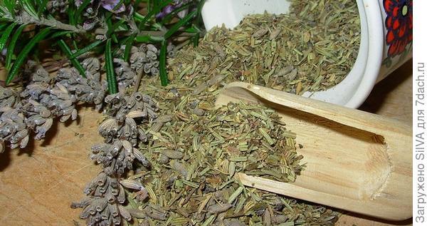 семена майорана