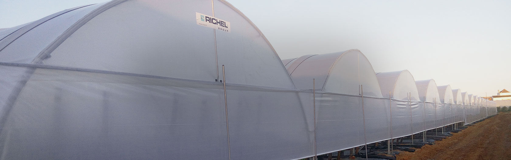 Serre Tunnel Svl Multi Tunnel Greenhouse Commercial Production Plastic Richel