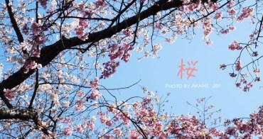 【東京上野】上野恩賜公園賞櫻行