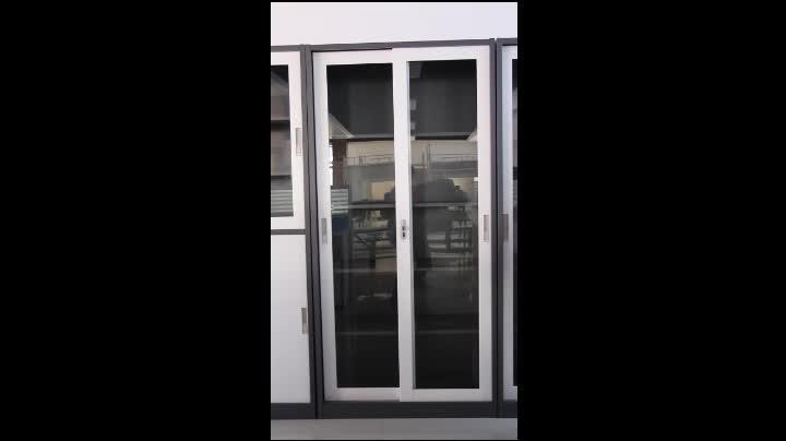 Bas 018 Hotsale Knock Down Laboratory Steel Glass Door