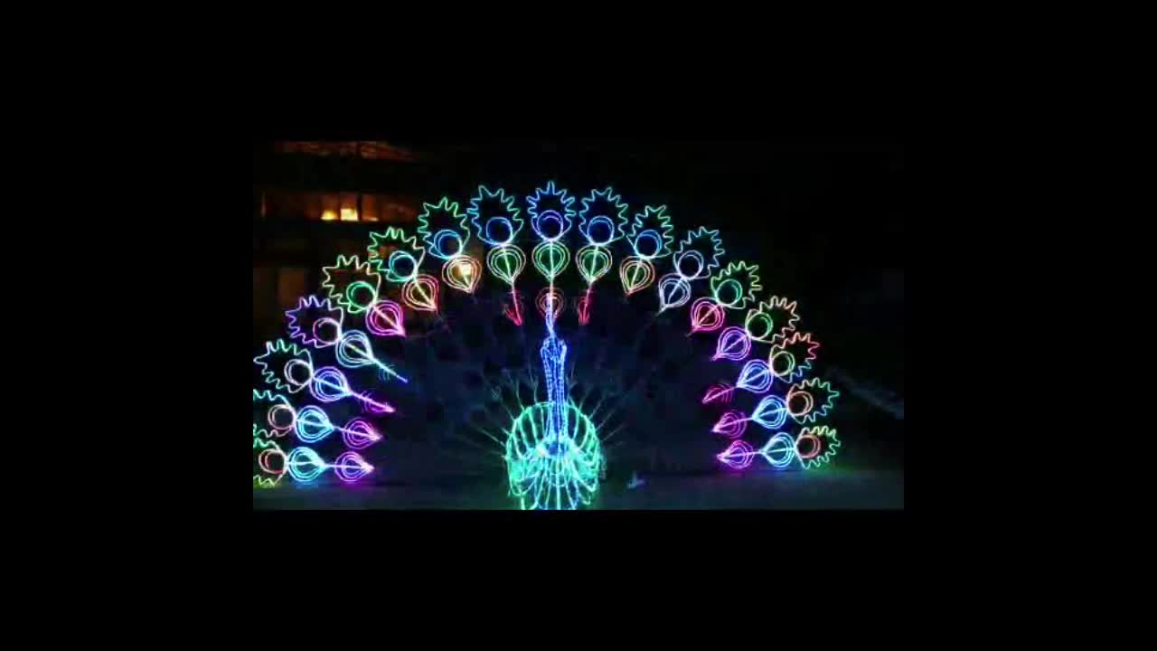 Light Decoration Diwali Wholesale Diwali Decoration Items Programmable Control Dynamic Led Peacock Light Buy Peacock Light Led Peacock Light Diwali Decorative Lights