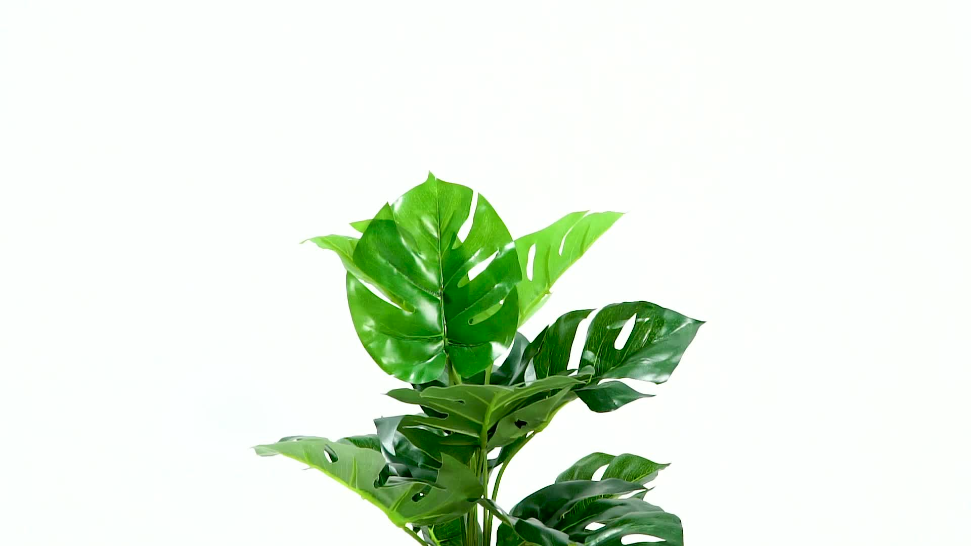 Buy Artificial Plants 2019 New Product Artificial Plants Bonsai Trees For Sale