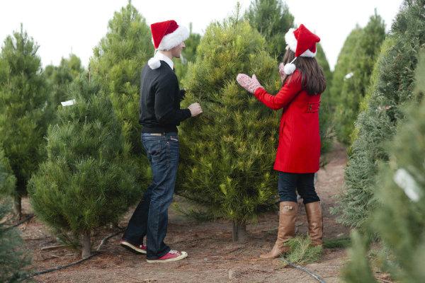 8 Charming Ideas for a Christmas Wedding