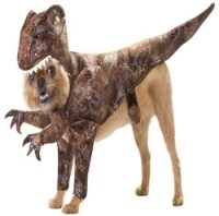 T-Rex Dog Costumes - 8 Charmingly Cute Costumes for Your ...