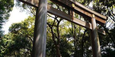【東京景點】澀谷區 明治神宮 ● 參拜人氣NO.1神社 ● 跟著在地狼來朝聖 ❤❤