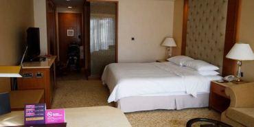 【高雄住宿】大樹區 義大皇家酒店 ● 有住有吃又有玩 ● 家族旅遊、情侶約會好去處 ❤❤