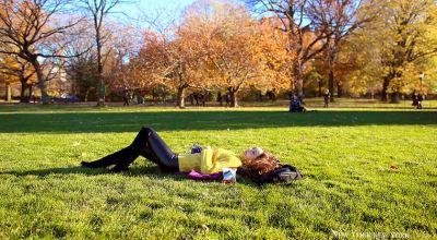 【紐約】中央公園秋日賞楓&愜意午睡+Lady M Cake Boutique午茶