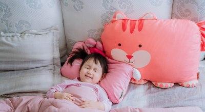 【育兒】超可愛又舒服的Milo & Gabby動物好朋友~防蟎MINI枕,超細纖維防蟎大枕,防扁頭嬰兒枕,雙面寶寶棉蓋毯