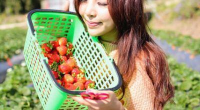 ▌旅遊 ▌行光合作用,少女的大湖採草莓一日遊!