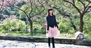 [新北市新店區 花園新城]來一場浪漫的粉紅漫遊   2017烏來櫻花花況  順遊景點屈尺公園櫻花也滿開
