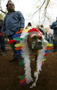 When Halloween costumes cross a cultural line | Minnesota ...