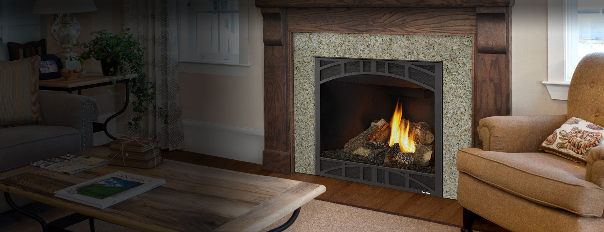Novus Fireplace Gas Fireplace Traditional Closed Hearth Built In Novus