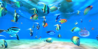 3d Fish Tank Wallpaper Live Aquarium Hd 2 Overview