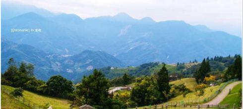 Nantou|南投‧仁愛|清境農場之商業羊咩咩