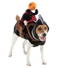 NEW HEADLESS HORSEMAN HORSE PUMPKIN DOG HALLOWEEN pet ...