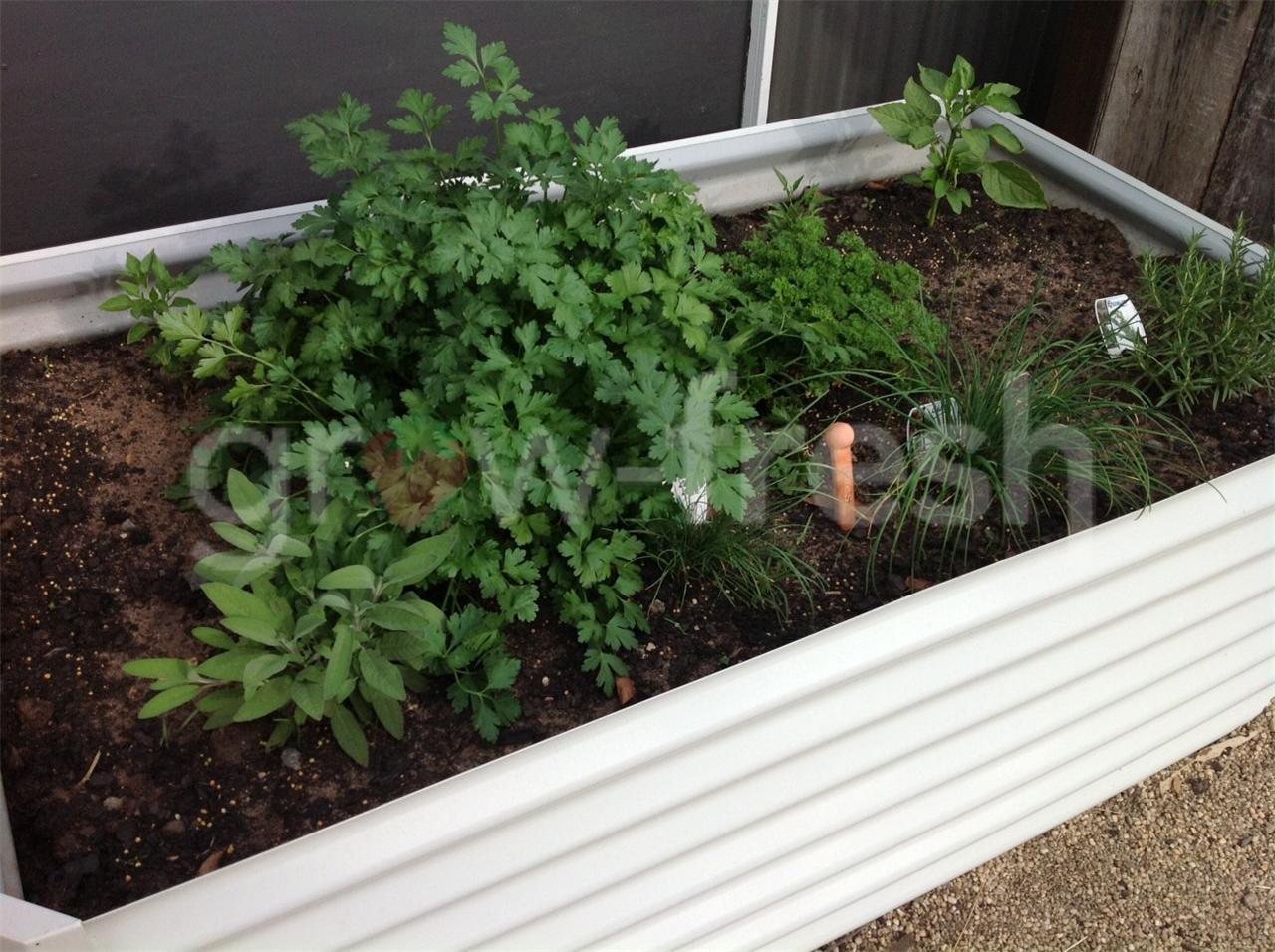 Colorbond Raised Garden Beds Stratco 2x Greenhouse Colorbond Diy Raised Planter Box Garden Bed