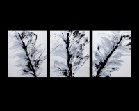 3 ABSTRACT CANVAS PAINTING black and white. Modern wall ...