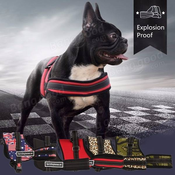 pet harness finland