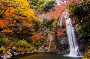 【大阪】。日本小旅行大阪賞楓名所の人気紅葉景點|明治之森箕面國定公園