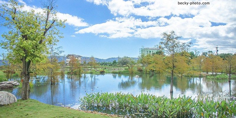【花蓮】。吉安鄉落羽松 親子玩水餐廳 『松湖驛站』 │ 花蓮餐廳