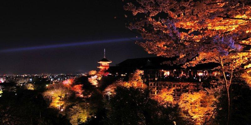 【京都】。夜間參拜~清水寺賞夜櫻(著名的賞楓、賞櫻勝地)