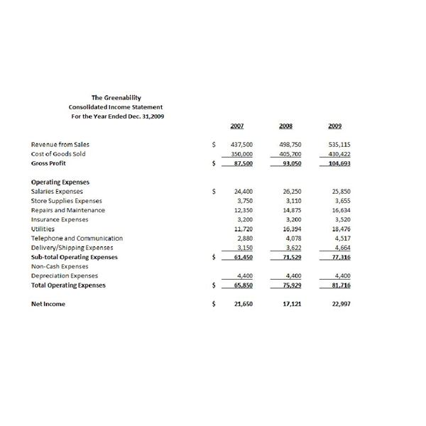 Analysis of Comparative and Common-Size Financial Statements - sample income statement