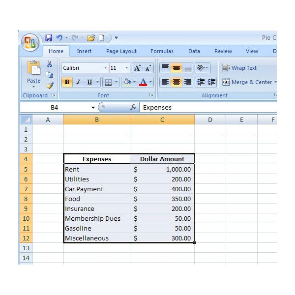 How to Create a Basic Pie Chart in Microsoft Excel 2007